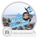 Wordpress-TYN-los-monos-icon